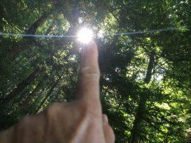 Wir frühstücken auf einer schattigen Bank. Die Sonne scheint durch die Bäume und ergießt sich scheinbar aus meinem Finger
