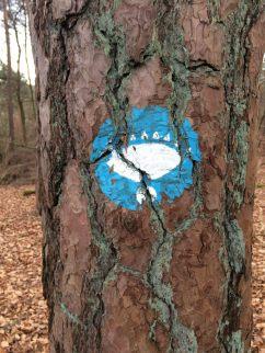 Baum mit aufgemaltem Wanderwegzeichen: ein blauer Kreis mit einem weißen Auge